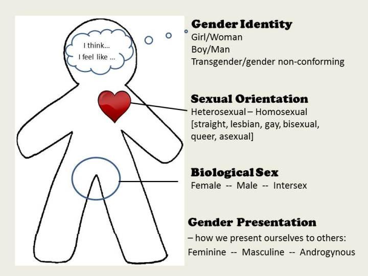 body-chart