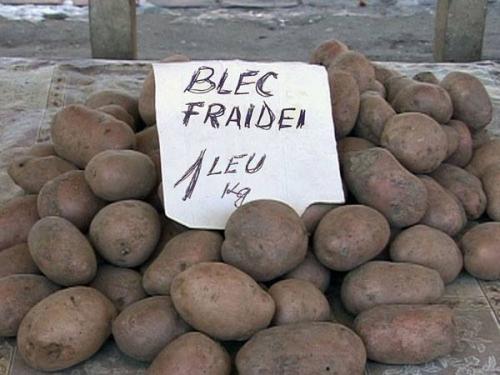 blec-fridei-1-leu